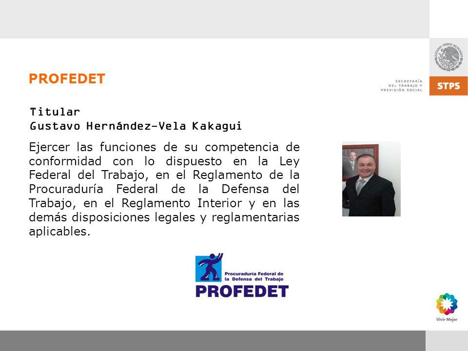 PROFEDET Titular Gustavo Hernández-Vela Kakagui