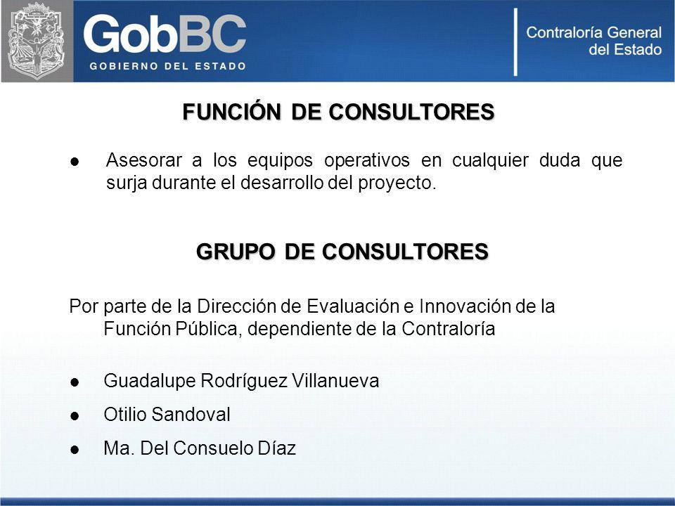 FUNCIÓN DE CONSULTORES