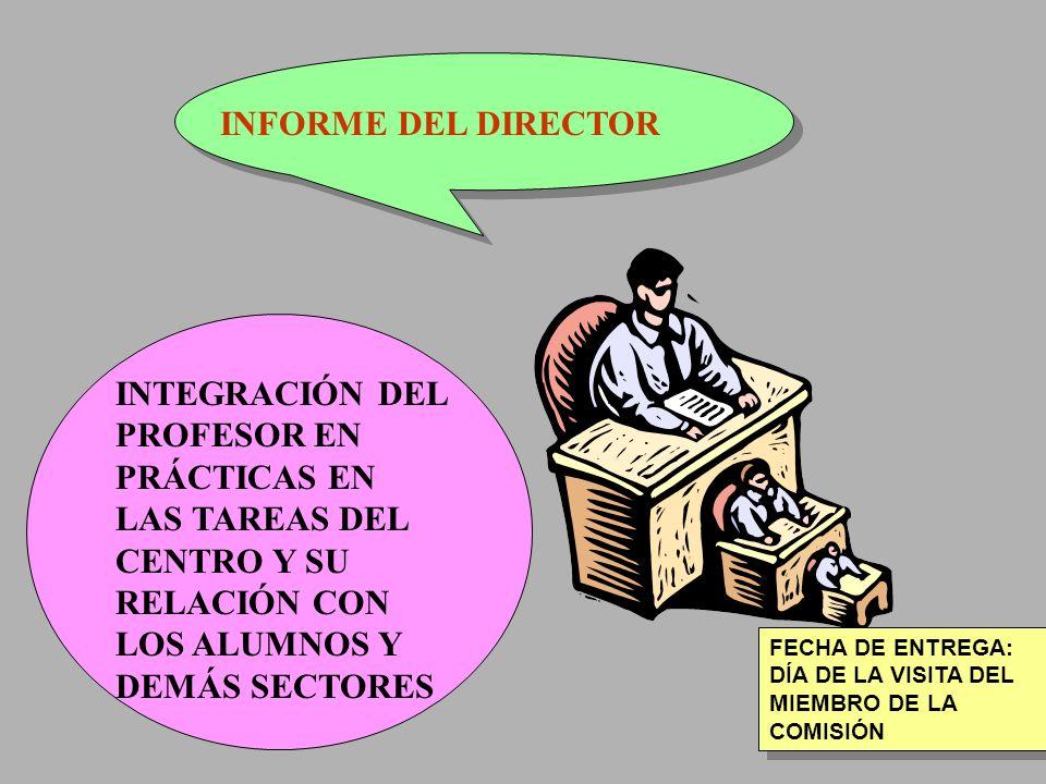 INFORME DEL DIRECTOR INTEGRACIÓN DEL PROFESOR EN PRÁCTICAS EN LAS TAREAS DEL CENTRO Y SU RELACIÓN CON LOS ALUMNOS Y DEMÁS SECTORES.