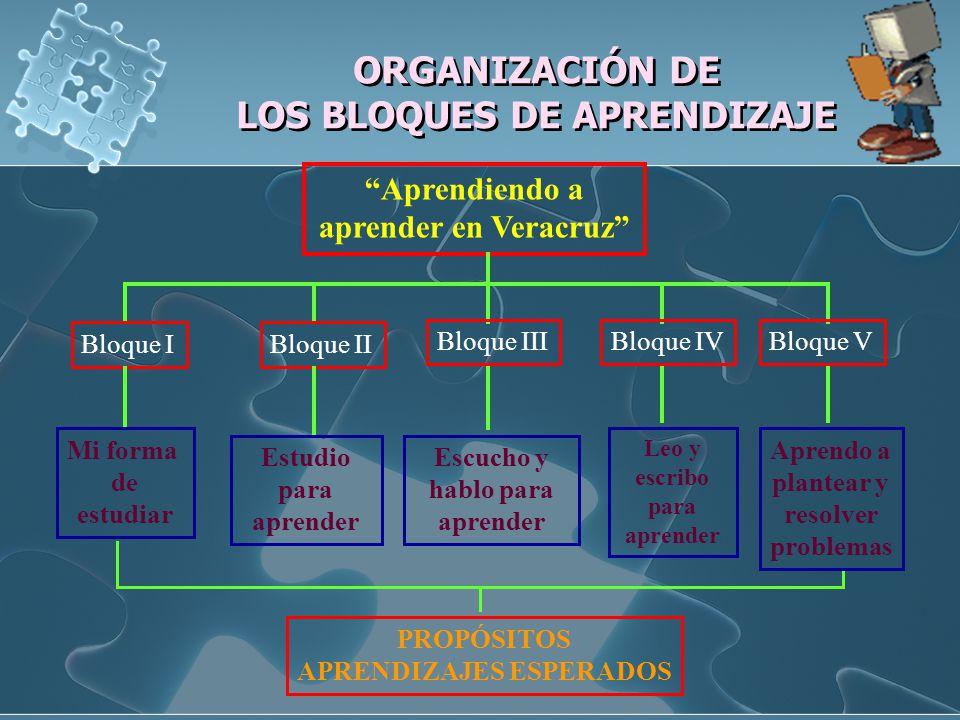 ORGANIZACIÓN DE LOS BLOQUES DE APRENDIZAJE