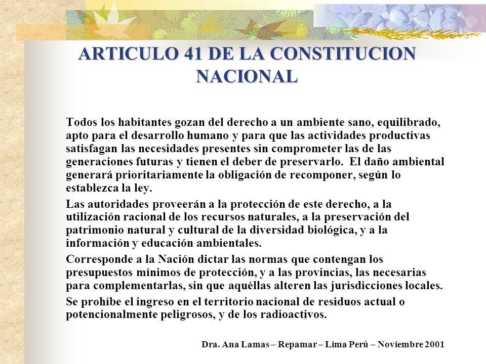ARTICULO 41 DE LA CONSTITUCION NACIONAL