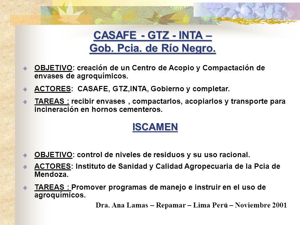 CASAFE - GTZ - INTA – Gob. Pcia. de Río Negro.