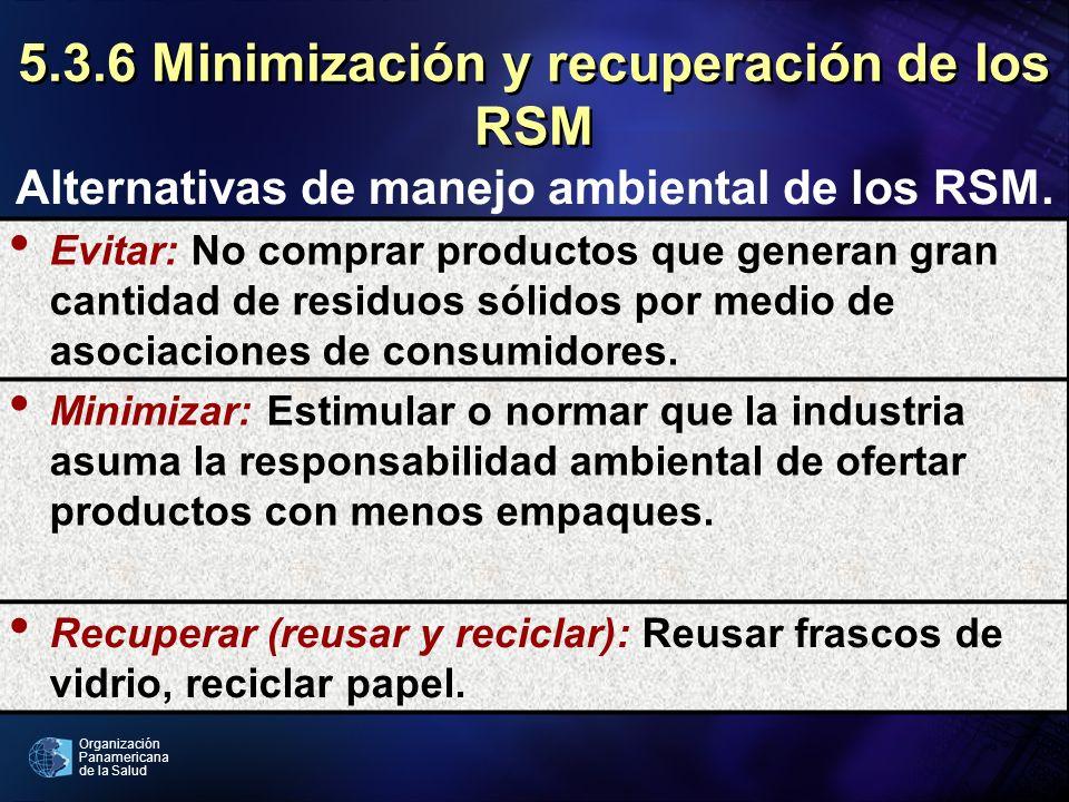 5.3.6 Minimización y recuperación de los RSM