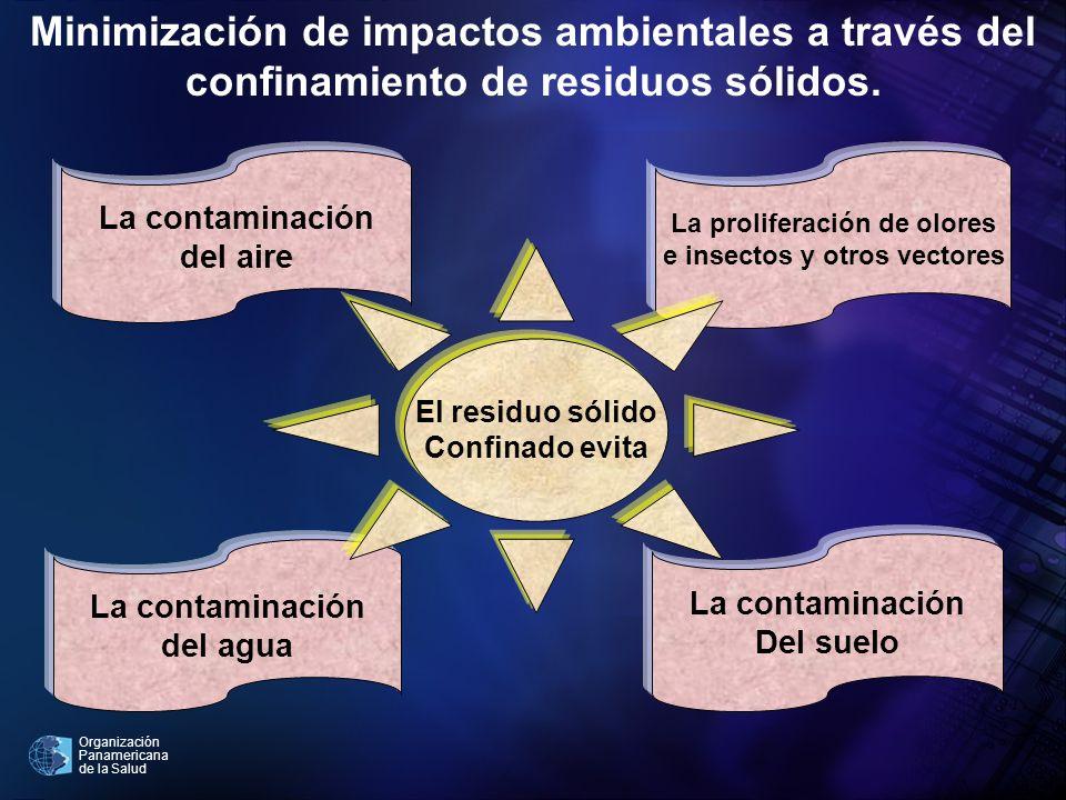 La proliferación de olores e insectos y otros vectores