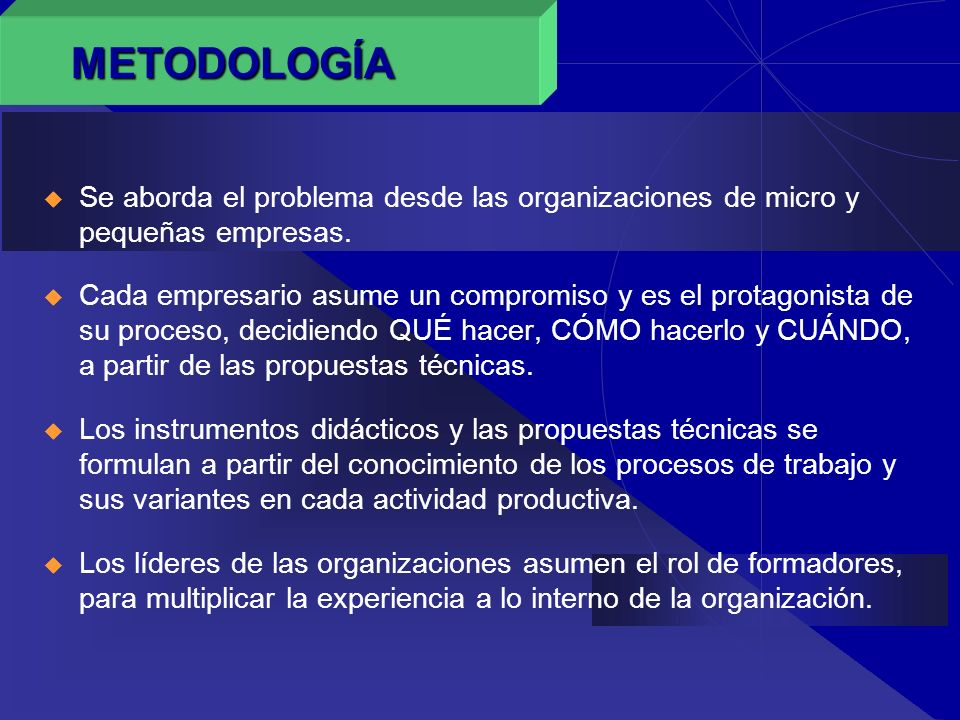 METODOLOGÍASe aborda el problema desde las organizaciones de micro y pequeñas empresas.