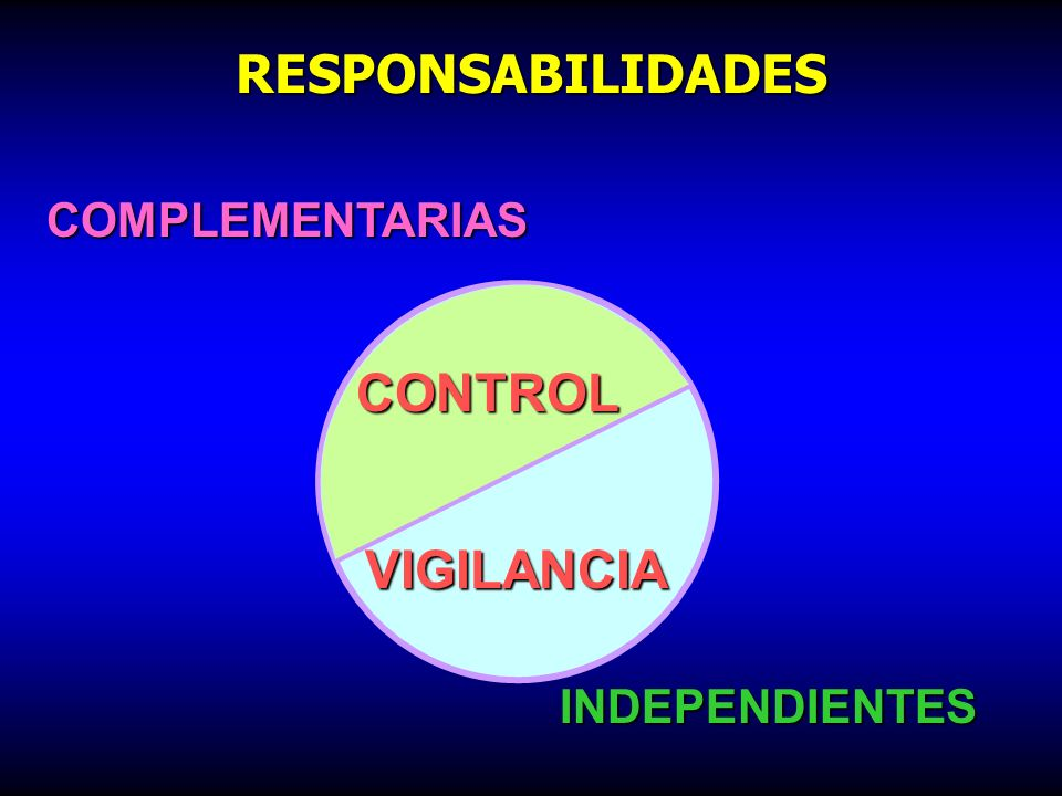RESPONSABILIDADES COMPLEMENTARIAS CONTROL VIGILANCIA INDEPENDIENTES