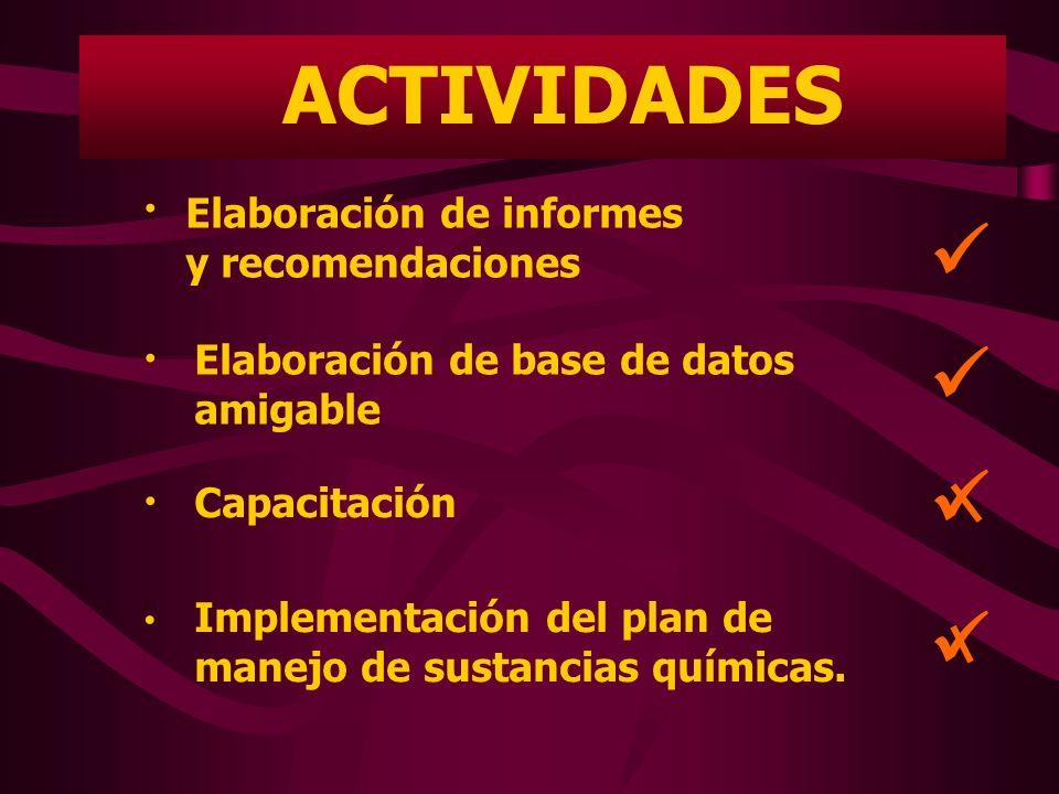 ACTIVIDADES  Elaboración de informes y recomendaciones