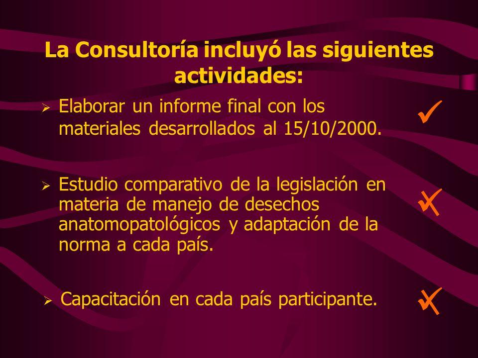 La Consultoría incluyó las siguientes actividades: