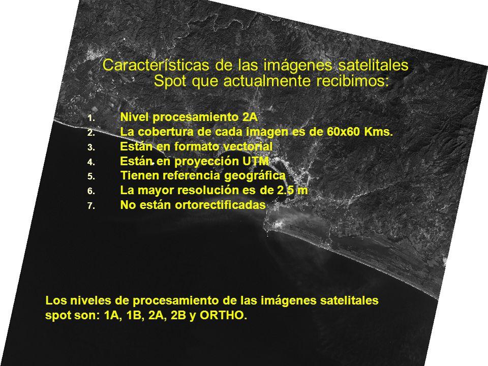 Características de las imágenes satelitales Spot que actualmente recibimos: