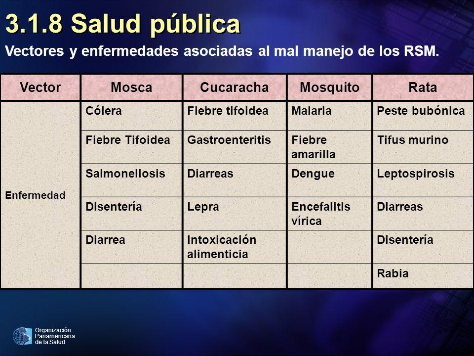 3.1.8 Salud públicaVectores y enfermedades asociadas al mal manejo de los RSM. Vector. Mosca. Cucaracha.