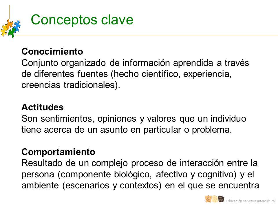 Conceptos clave Conocimiento