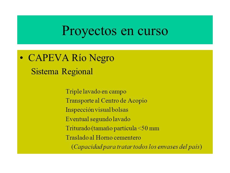 Proyectos en curso CAPEVA Río Negro Sistema Regional