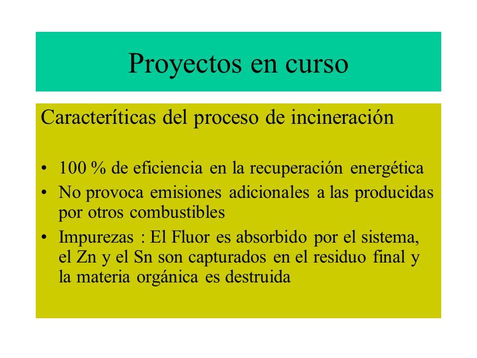 Proyectos en curso Caracteríticas del proceso de incineración