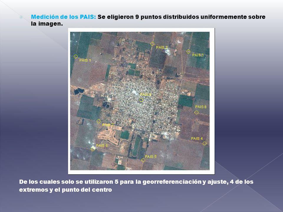Medición de los PAIS: Se eligieron 9 puntos distribuidos uniformemente sobre la imagen.
