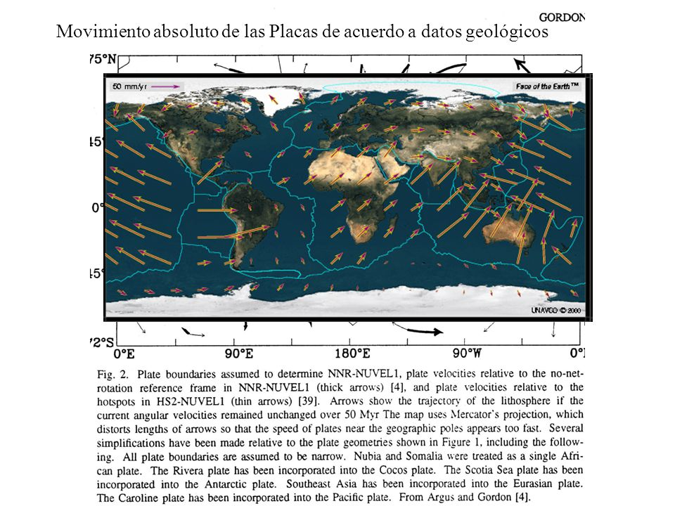 Movimiento absoluto de las Placas de acuerdo a datos geológicos