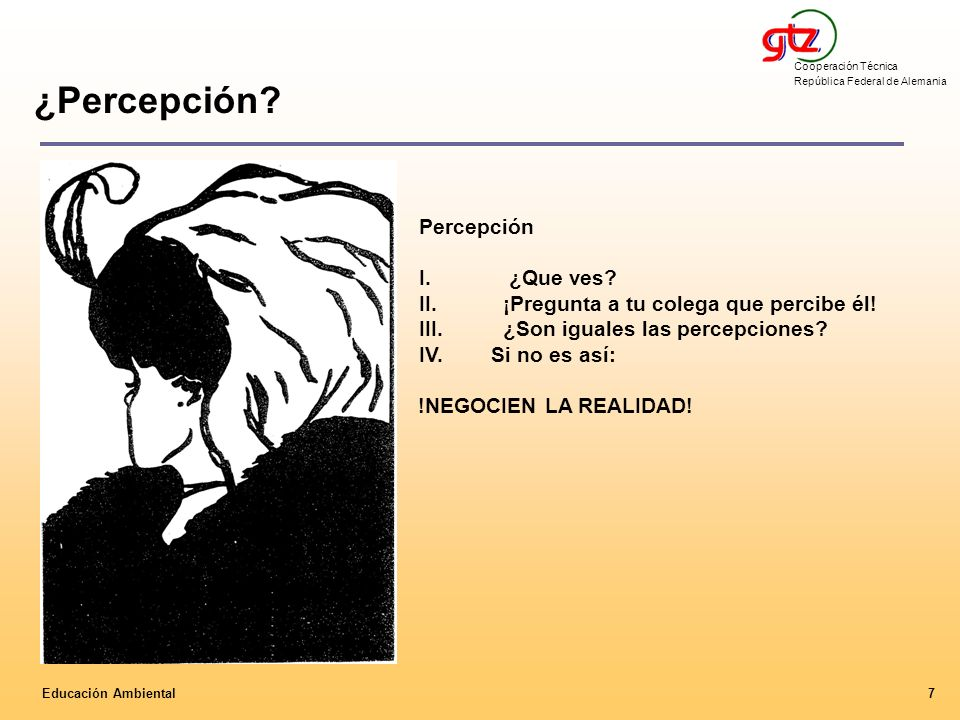 ¿Percepción Percepción I. ¿Que ves