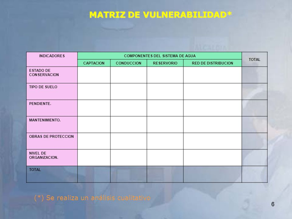 MATRIZ DE VULNERABILIDAD*