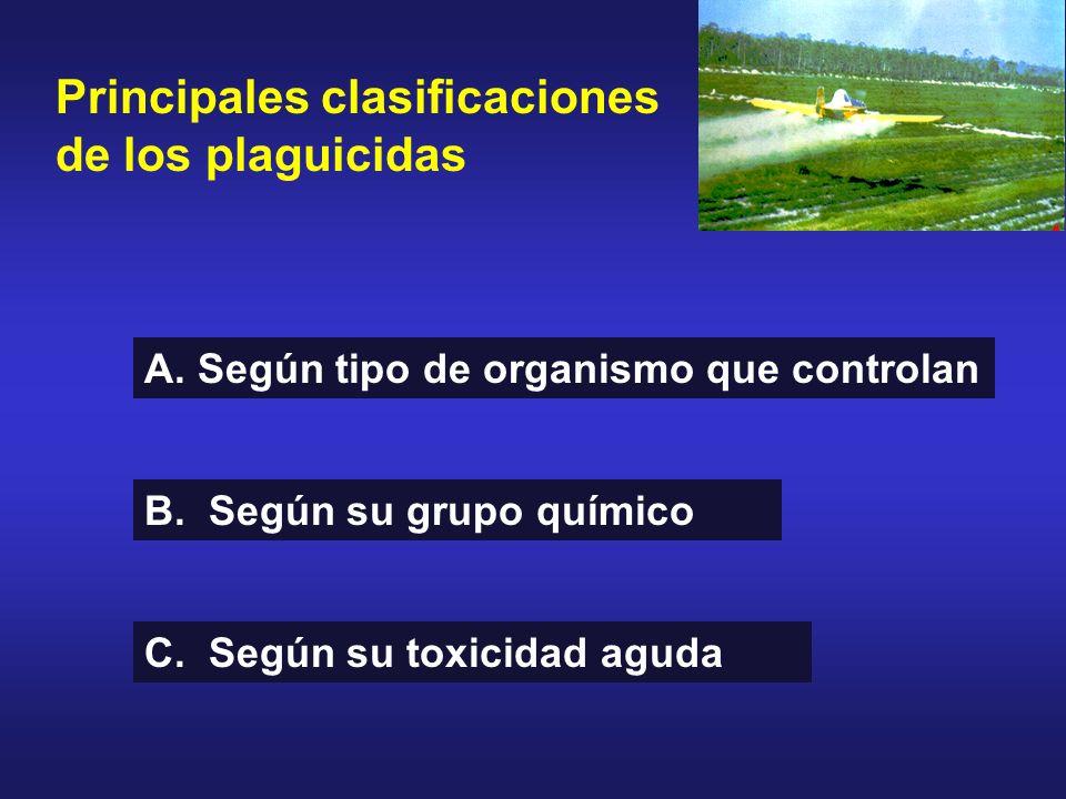 Principales clasificaciones de los plaguicidas