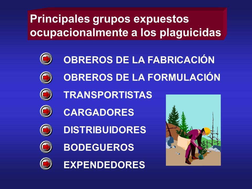 Principales grupos expuestos ocupacionalmente a los plaguicidas