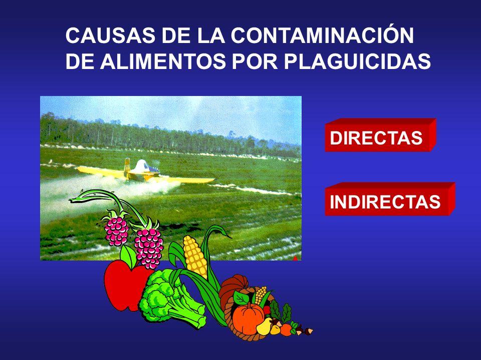 CAUSAS DE LA CONTAMINACIÓN DE ALIMENTOS POR PLAGUICIDAS