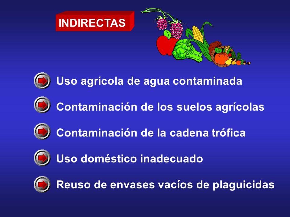INDIRECTAS Uso agrícola de agua contaminada. Contaminación de los suelos agrícolas. Contaminación de la cadena trófica.