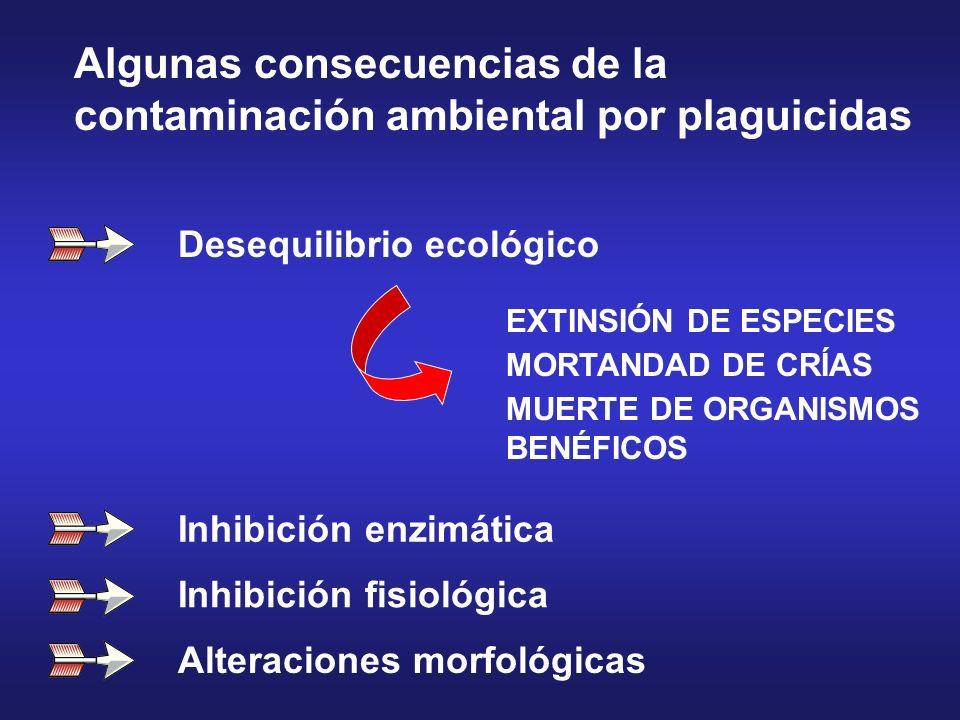 Algunas consecuencias de la contaminación ambiental por plaguicidas
