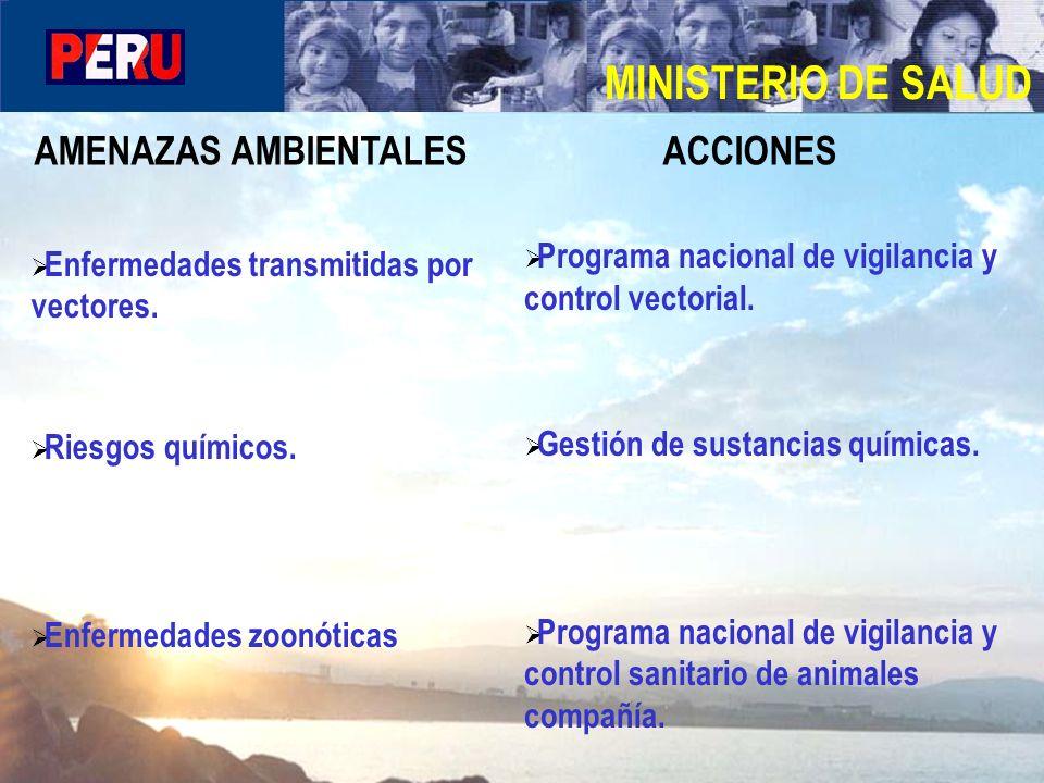 MINISTERIO DE SALUD AMENAZAS AMBIENTALES ACCIONES