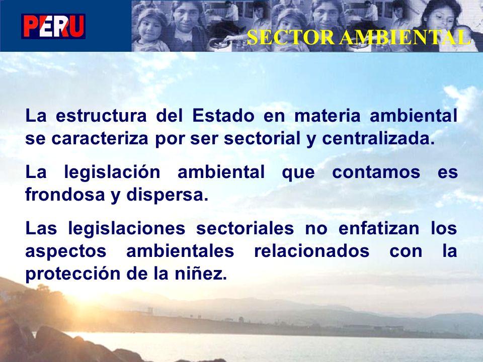SECTOR AMBIENTAL La estructura del Estado en materia ambiental se caracteriza por ser sectorial y centralizada.