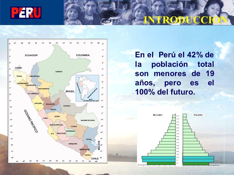 INTRODUCCION En el Perú el 42% de la población total son menores de 19 años, pero es el 100% del futuro.