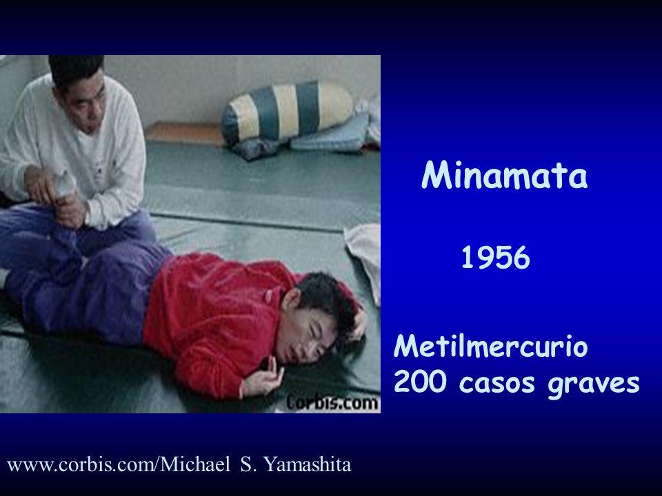 Minamata 1956 Metilmercurio 200 casos graves