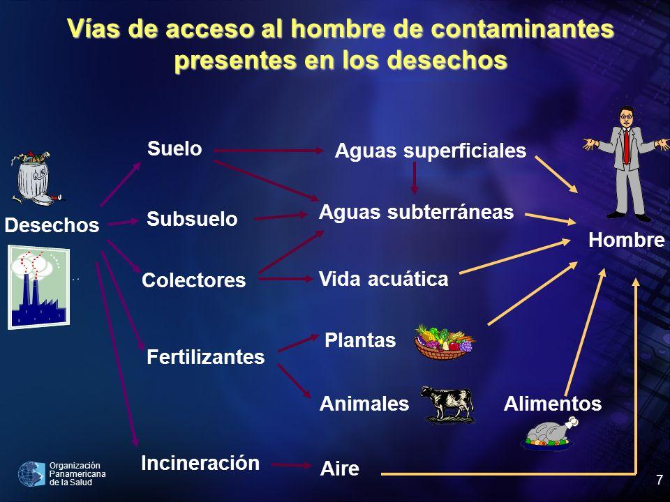 Vías de acceso al hombre de contaminantes presentes en los desechos