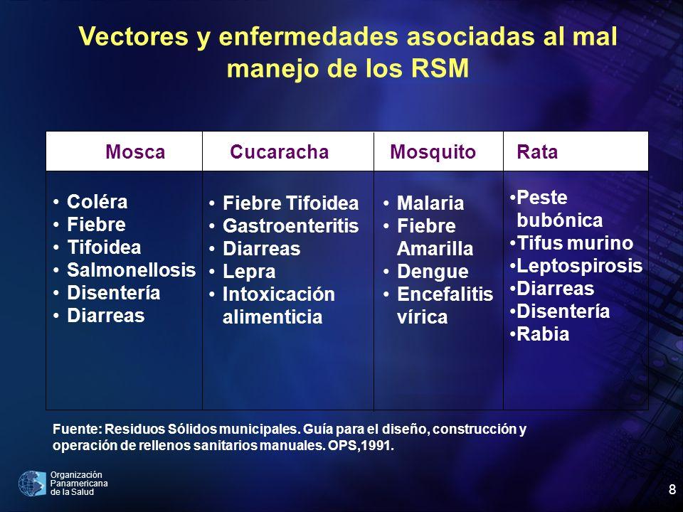 Vectores y enfermedades asociadas al mal manejo de los RSM