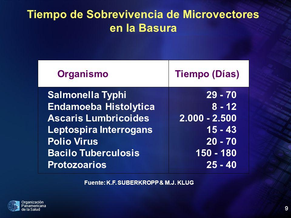 Tiempo de Sobrevivencia de Microvectores en la Basura