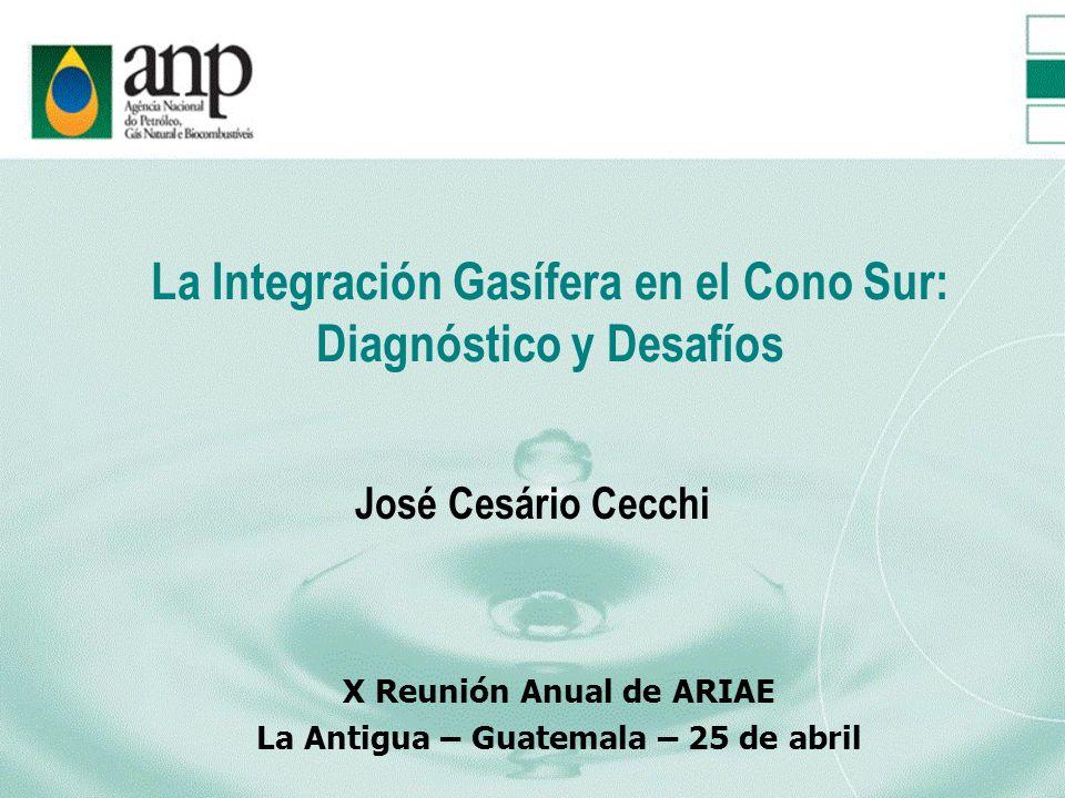 La Integración Gasífera en el Cono Sur: Diagnóstico y Desafíos