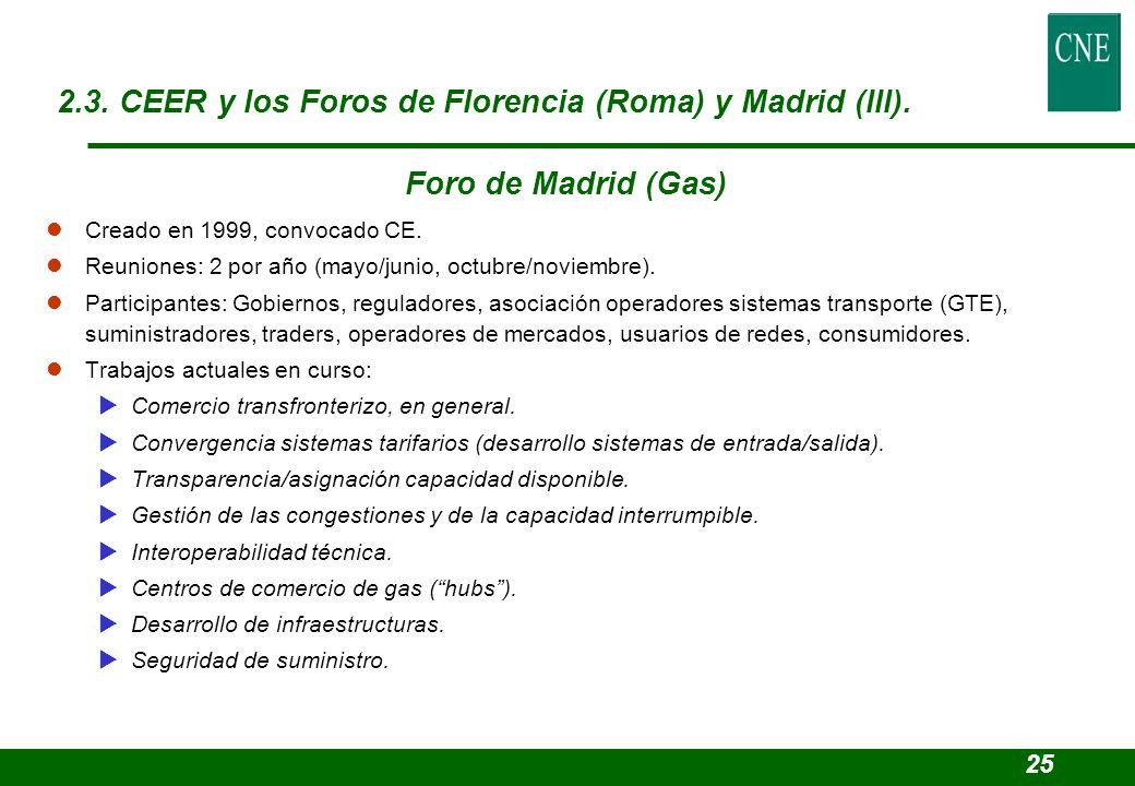 2.3. CEER y los Foros de Florencia (Roma) y Madrid (III).
