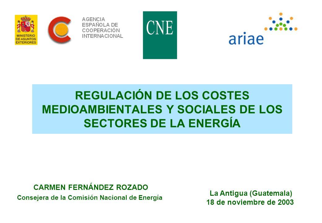 REGULACIÓN DE LOS COSTES MEDIOAMBIENTALES Y SOCIALES DE LOS SECTORES DE LA ENERGÍA
