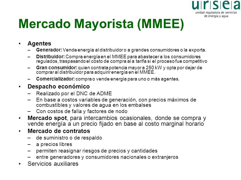 Mercado Mayorista (MMEE)