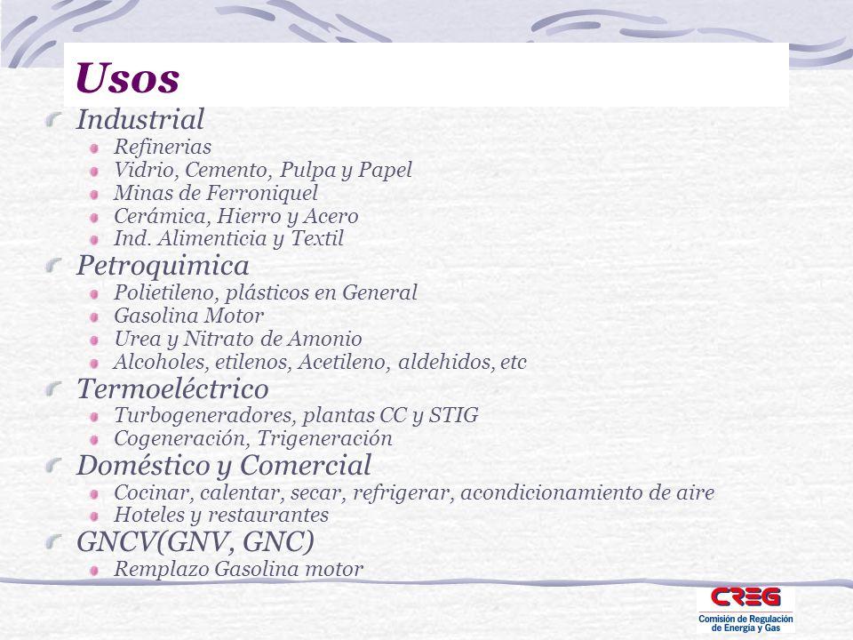 Usos Industrial Petroquimica Termoeléctrico Doméstico y Comercial