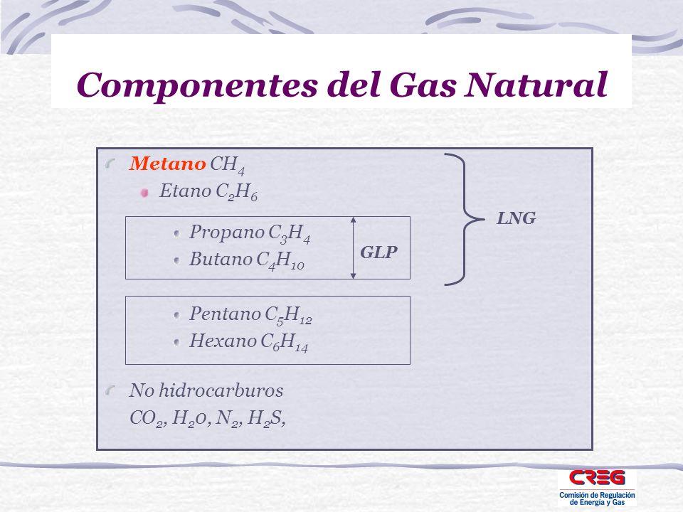 Componentes del Gas Natural