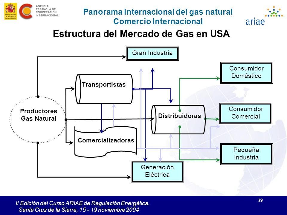 Estructura del Mercado de Gas en USA