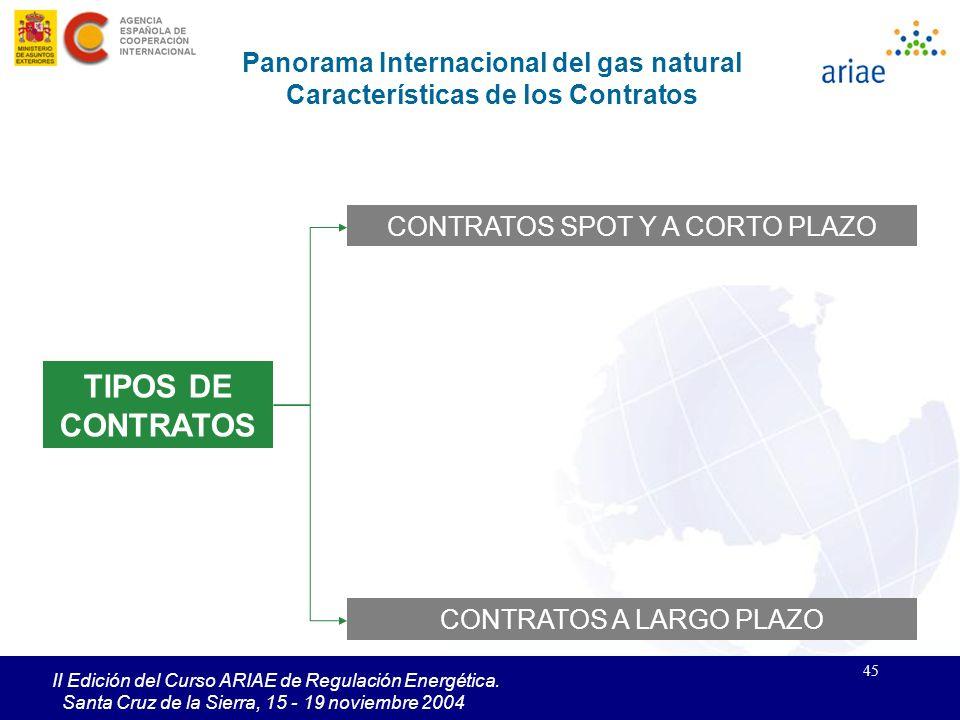 Panorama Internacional del gas natural Características de los Contratos