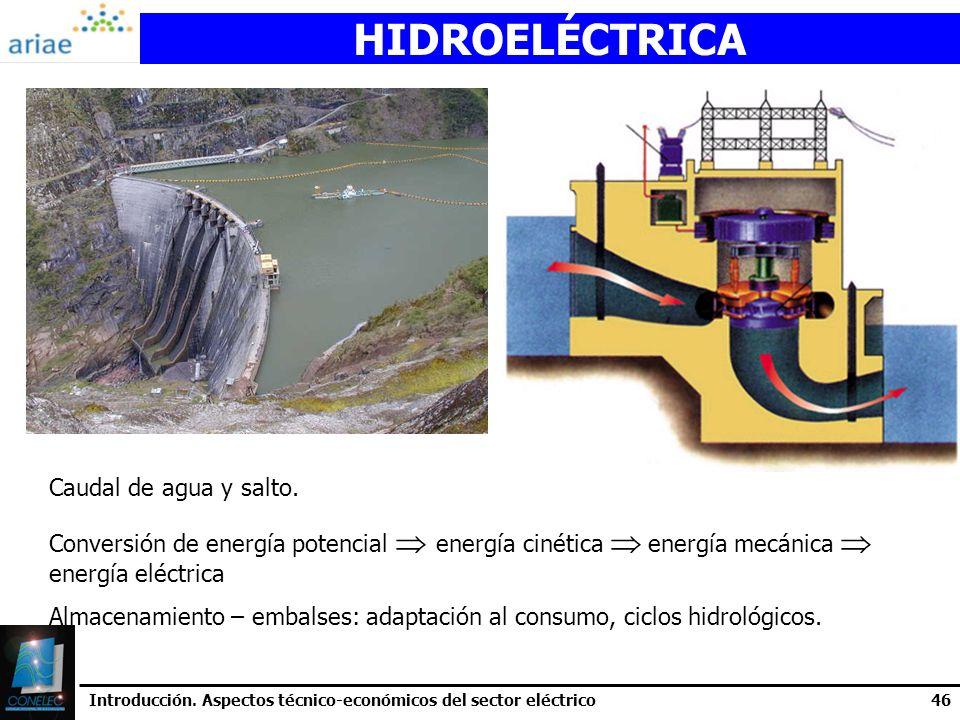 HIDROELÉCTRICA Caudal de agua y salto.