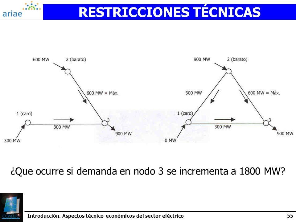 RESTRICCIONES TÉCNICAS