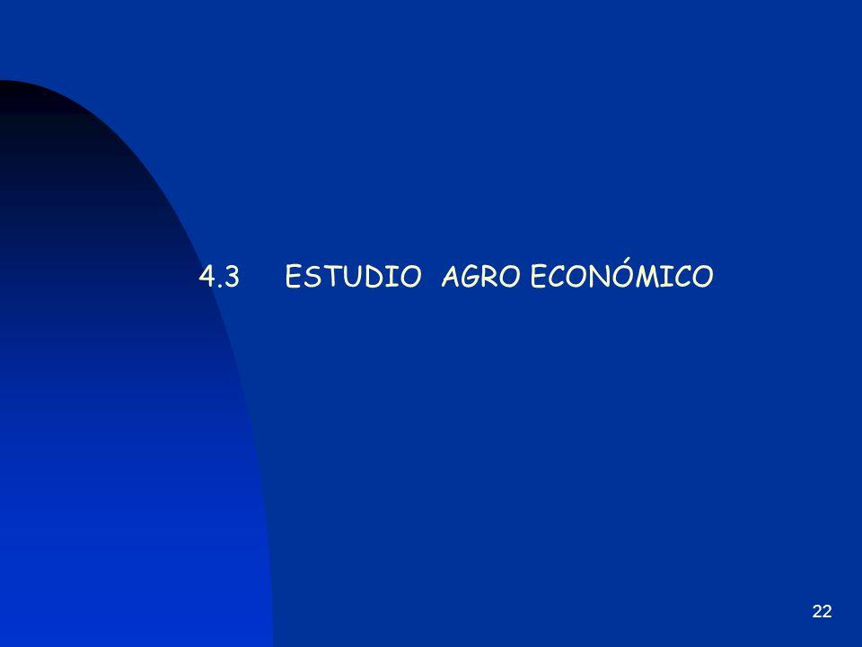 4.3 ESTUDIO AGRO ECONÓMICO
