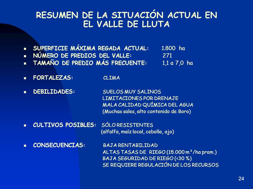 RESUMEN DE LA SITUACIÓN ACTUAL EN EL VALLE DE LLUTA