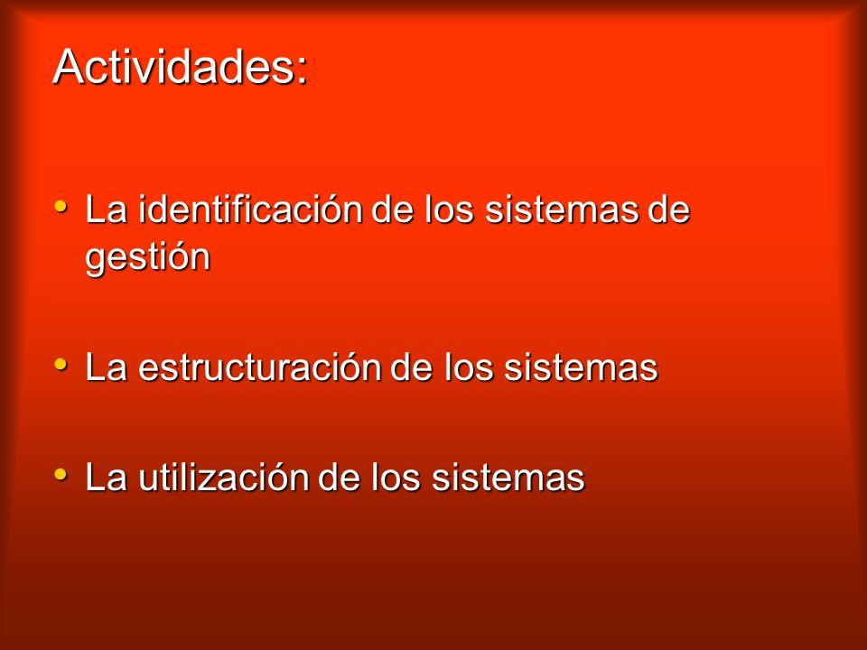Actividades: La identificación de los sistemas de gestión