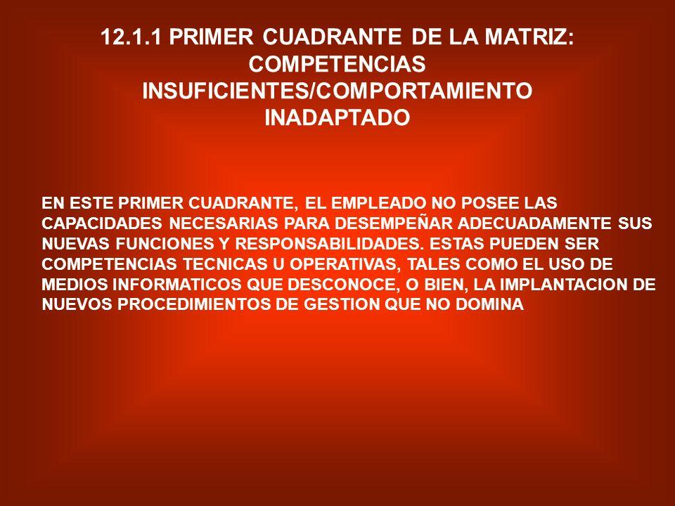 12.1.1 PRIMER CUADRANTE DE LA MATRIZ: COMPETENCIAS INSUFICIENTES/COMPORTAMIENTO INADAPTADO