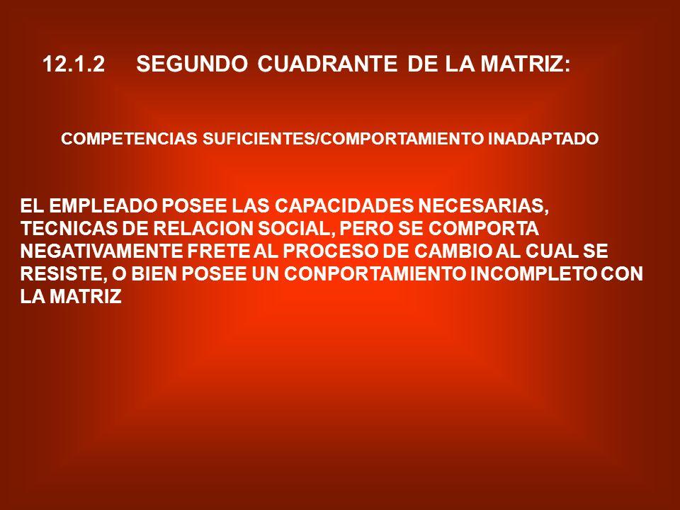 12.1.2 SEGUNDO CUADRANTE DE LA MATRIZ: