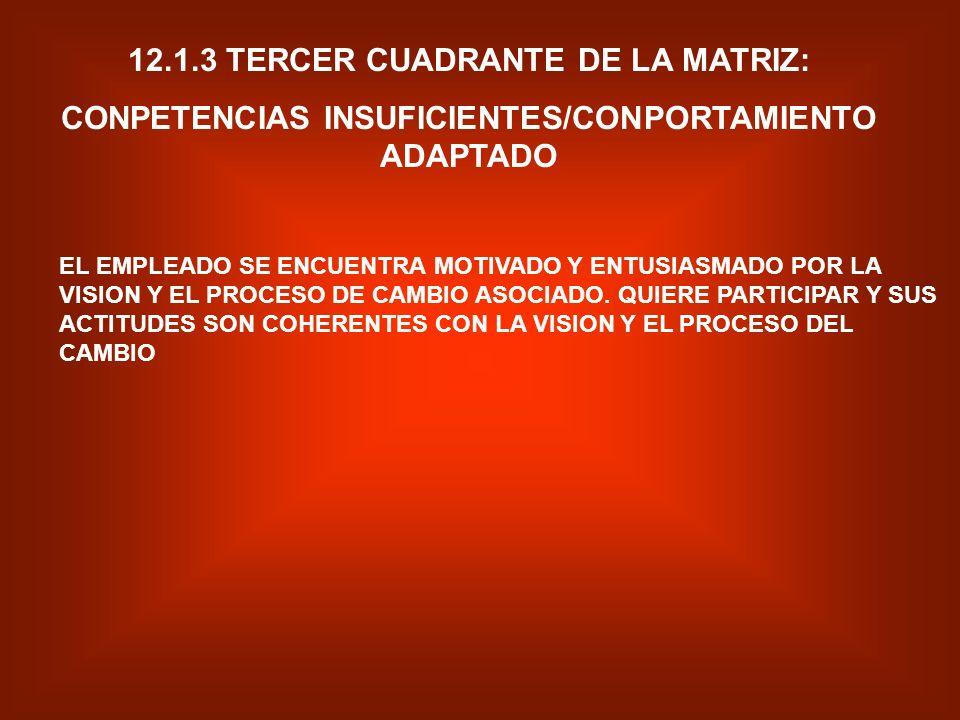 12.1.3 TERCER CUADRANTE DE LA MATRIZ: