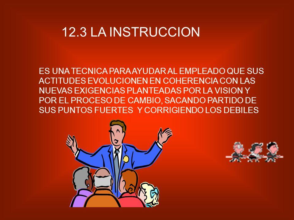 12.3 LA INSTRUCCION
